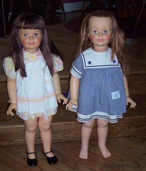 To large real looking little girl dolls standing side by side on a wooden step. The doll on the left has long shiny brown hair, pink cheeks, light colored eyes, pink lips and is wearing a white dress with yellow and pink flowers on it and black shiny shoes. The doll on the right has light brown hair, rosey pink cheeks and blue eyes and is wearing a blue and white sailor dress.