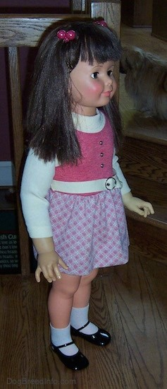 Front side view of a real looking little girl doll with long dark brown hair with bangs with pink ball hair clip bands on each side of her head, dark eyelashes, pink cheeks and pink lips. She is wearing a white and pink dress with a white belt, white socks and shiny black shoes.