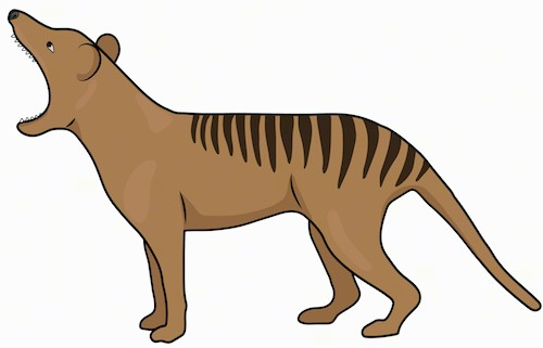 Sideview of a brown dog with sharp teeth, stripes on his back and a long tail standing