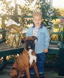 A boy in a blue jean jacket is standing on a porch and he is looking forward. In front of it is a brown with white and black Boxer sitting. The boy and the Boxer are both looking forward.