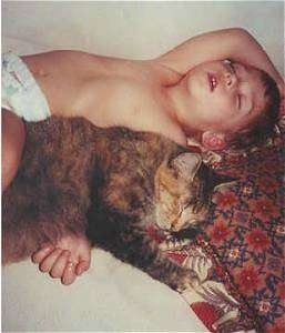 A shirtless child is laying on his back on a bed and there is a cat sleeping overtop of his arm.
