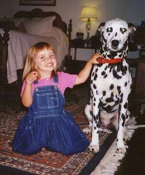A girl in a pink shirt and blue jean suspenders is sitting on her knees next to a black and white Dalmatian dog. They all are looking forward.