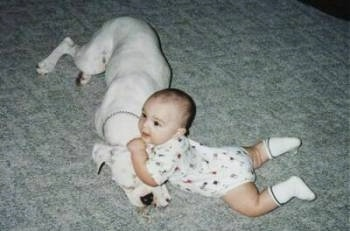 A baby is laying on its belly on a tan carpet with its front end on top of a large white dog.