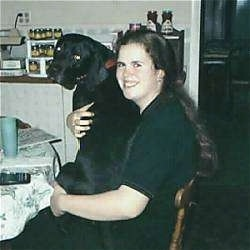 A large black Lab Pointer is sitting in the lap of a lady sitting at a kitchen table
