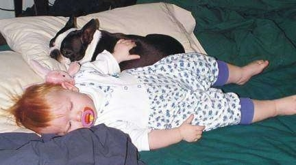 A baby is sleeping on a bed with a pacifier in her mouth and behind her is a black with white Boston Terrier dog laying on a tan pillow.