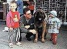 A Leonberger is sitting in front of a house and there is a man kneeling next to it. There is a little girl in a blue hat standing to the right of the dog. The left of the dog and man is a boy in a red shirt.
