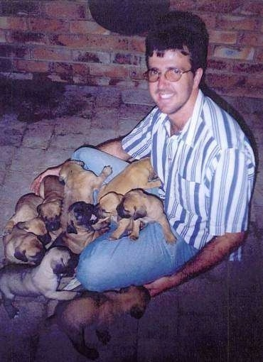 A litter of Boerboel puppies laying in a mans lap