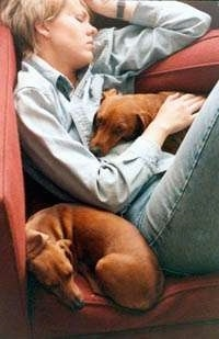 A lady is sleeping on a red couch and on top of her is a red Dachshund dog and next to her is a second sleeping red Dachshund dog.