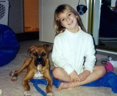 A girl in a white shirt has her head tilted to the left and she is sitting on a tan carpet next to a tan with white Boxer dog.