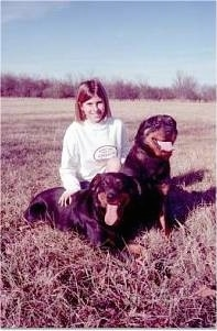 There is a lady in a white sweat shirt sitting in-between a sitting and a laying black and tan Rottweiler in a field brown grass. Both of their mouths are open and tongues are out.