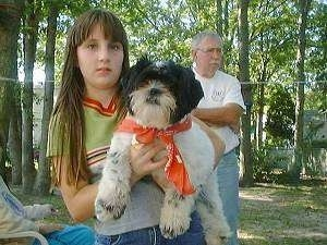 A girl is holding a white with black Shih Tzu in the air. The dog is wearing a red bandana and there is a man in a white shirt standing behind them with tall trees in the distance.