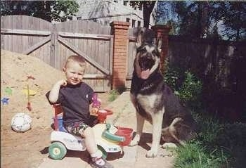 Gektor Jaromir the black and tan East-European Shepherd is sitting next to a child who is sitting on a plastic riding toy. There is a mound of dirt behind the child with toys in it.