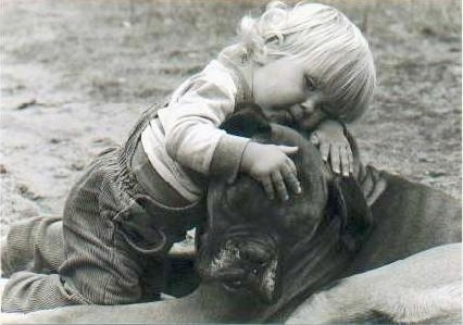 A black and white photo of a blonde toddler laying across the head of a Boxer dog outside in the dirt.