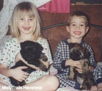 A smiling boy and a girl are sitting on a bed next to each other. They each have Havanese puppies in there laps