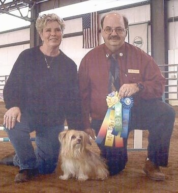 Lindsey the Yorkshire Terrier is sitting in front of its owner. They are sitting next to a guy who is holding a multi-colored ribbon and a blue ribbon.