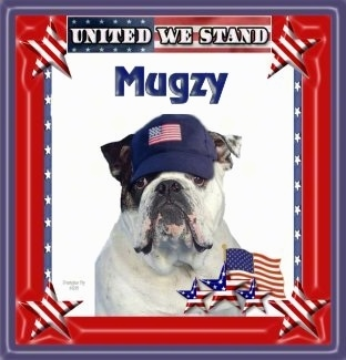 Mugzy the English Bulldog is on photoshopped background and a american flag hat is photoshopped on its head. The words 'United We Stand' are on the frame. And over top of Mugzy the word 'Mugzy' is overlayed