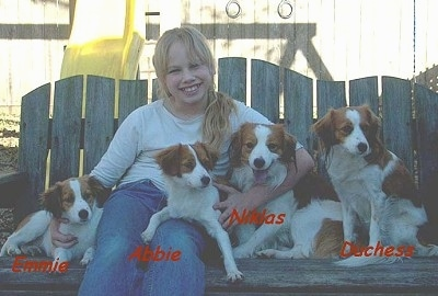 Four Kooikerhondje dogs are sitting outside on a wooden glider bench next to a young blond-haired lady. The words - Emmie Abbie Niklas Duchess - are overlayed