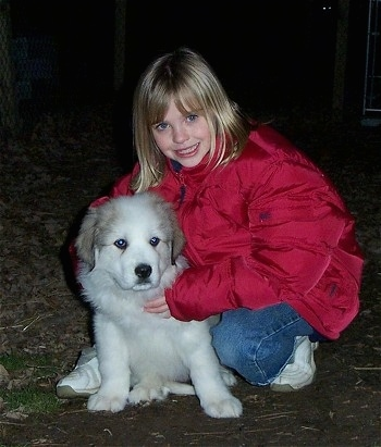 A blonde haired girl in a red coat is kneeling and hugging a fluffy white with tan Great Pyrenees puppy that is next to her