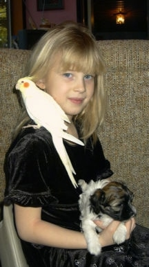 A girl in a black dress is sitting in a chair behind a couch. She has a puppy laying across her lap and on her shoulder is a yellow cockatiel bird.