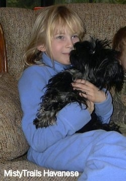 A smiling blonde haired girl in blue has a black Havanese puppy in her arms sitting on a tan couch.