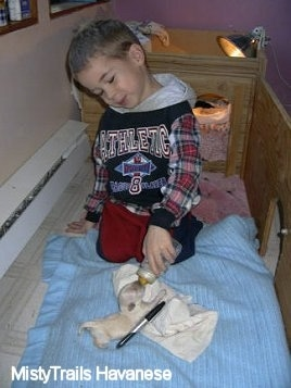 A cream Havanese Puppy is laying on a hand cloth and a towel with a black marker next to it. It is being feed out of a bottle by a small smiling boy.