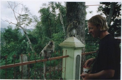A man is reaching into a cup of nuts. There are two monkeys on a fence in front of them and they are eating nuts.
