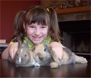A girl is standing behind two rabbits laying on a table. The girl is looking forward and smiling.