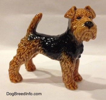 The right side of a shiny, black and brown Vintage Airedale Terrier dog West Germany Goebel figurine with its tail up in the air, a black nose and small v-shaped ears.