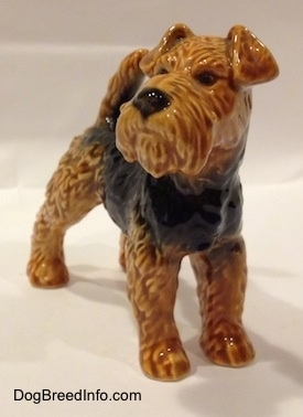 The front of a black and brown Vintage Airedale Terrier dog West Germany Goebel figurine that has a wide muzzle, textured lines showing thick fur, short v-shaped ears and a tail that is up in the air.