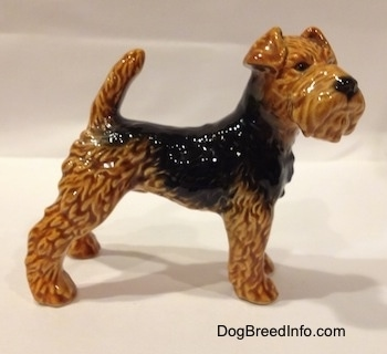 The left side of a black and brown Vintage Airedale Terrier dog West Germany Goebel figurine that is standing in a stack show dog pose.