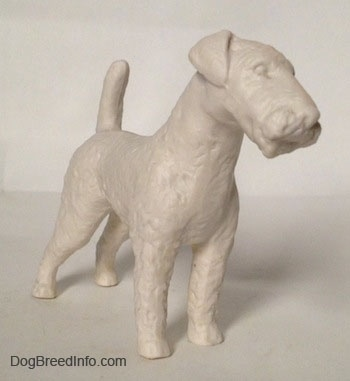 The front right side of a white bisque porcelain Airedale Terrier dog figurine that is unglazed. The dogs tail is up on the air and it has small ears that fold to the front.