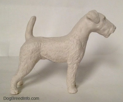 The right side of a white bisque porcelain Airedale Terrier dog figurine that is unglazed. The dog's tail is up in the air, it has small ears that fold to the front and a boxy long muzzle that does not have a stop.