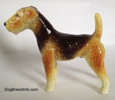 The left side of a black and tan with white Vintage Goebel Airedale Terrier porcelain dog figurine The colors in the tan vary from light tan to a darker tan.