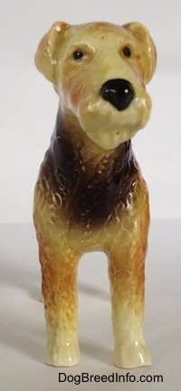A black and tan with white Vintage Goebel Airedale Terrier porcelain dog figurine. The dogs nose and eyes are painted black.