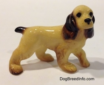 The right side of a tan with black and brown Cocker Spaniel ceramic figurine. It has black circles for eyes.