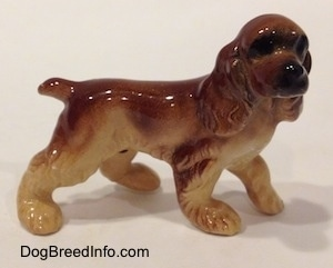 The right side of a brown and tan ceramic Cocker Spaniel figurine. It has very detailed ears.