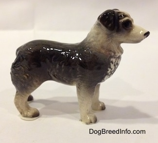 The right side of a black and white Australian Shepherd figurine. The figurine has fine hair details.