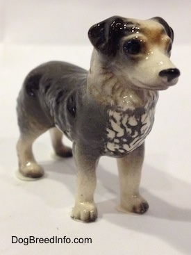 The front right side of a black and white Australian Shepherd figurine. The chest of the figurine has some white lined paint.