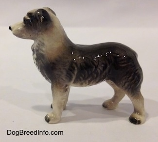 The left side of a black and white Australian Shepherd figurine. The figurine is glossy.