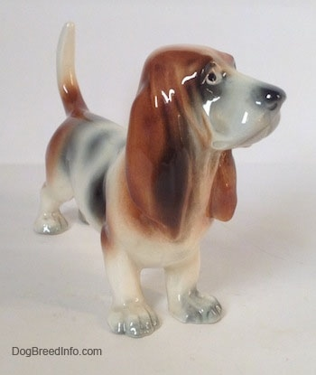 The front right side of a white with black and red Basset Hound figurine. The figurine is glossy. The dog has a long snout, a big black nose and long drop ears.