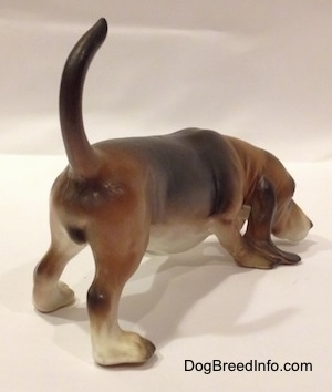 The back right side view of a brown and black with white porcelain Basset Hound figurine that is sniffing.