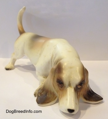 A white with brown and black porcelain Basset Hound figurine that is sniffing. The figurine has very detailed ears.