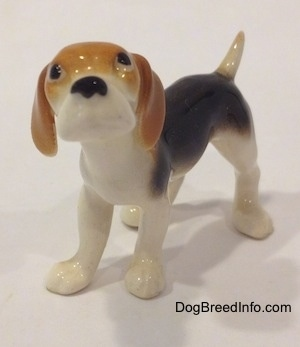 The front left side of a black and white with tan miniature Beagle figurine. The figurine has no mouth.