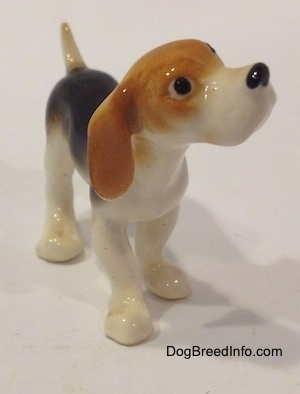 The front right side of a black and white with tan miniature Beagle figurine. The figurine has circles for eyes.