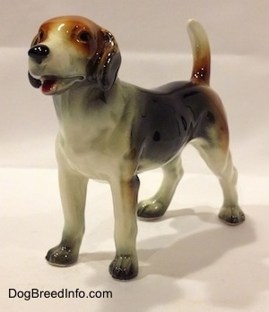 The front left side of a black, brown and white Beagle figurine. The figurine has great mouth details.