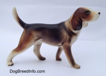 The right side of a black, brown and white porcelain Beagle Harrier figurine in a standing pose. The figurine has an arched tail.