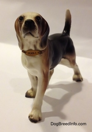 "The front right side of a black, brown and white ceramic Beagle figurine with a chain ID collar that reads ""Beagle"". The figurine has its tail arched in the air."
