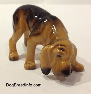 The front right side of a brown and black Hagen Renaker Miniature Bloodhound figurine. The figurine has great paw details. It has a boxy snout and painted black eyes.