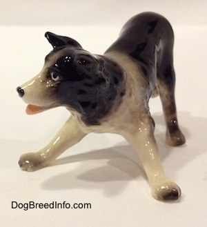 The front left side of a Hagen-Renaker miniature black with white Border Collie figurine. It is hard to tell the details of the ear from the rest of the head.