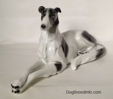 The front left side of a white with black vintage Borzoi figurine that is laying down.